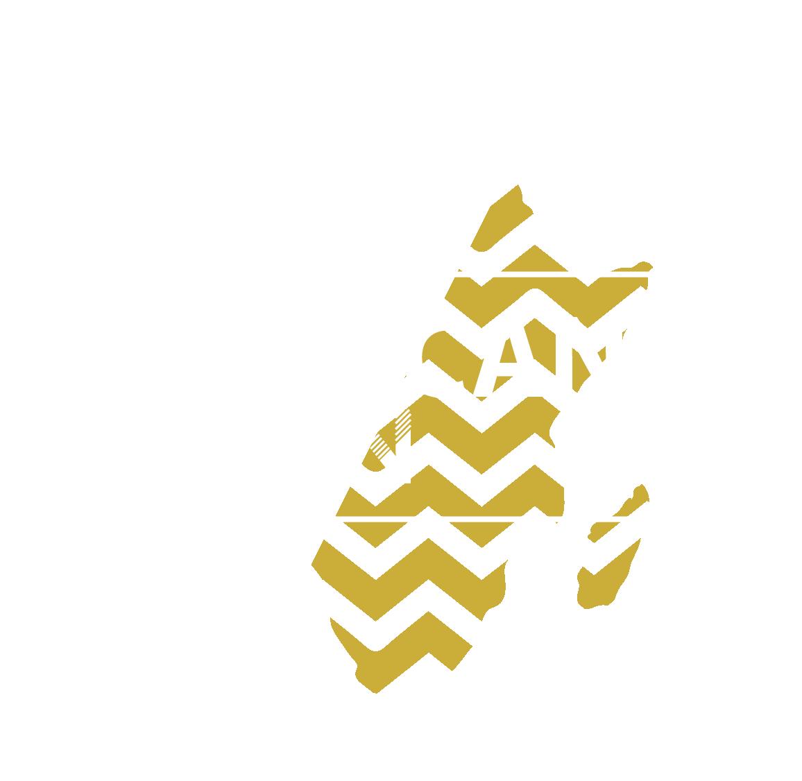 African Teen LOGO